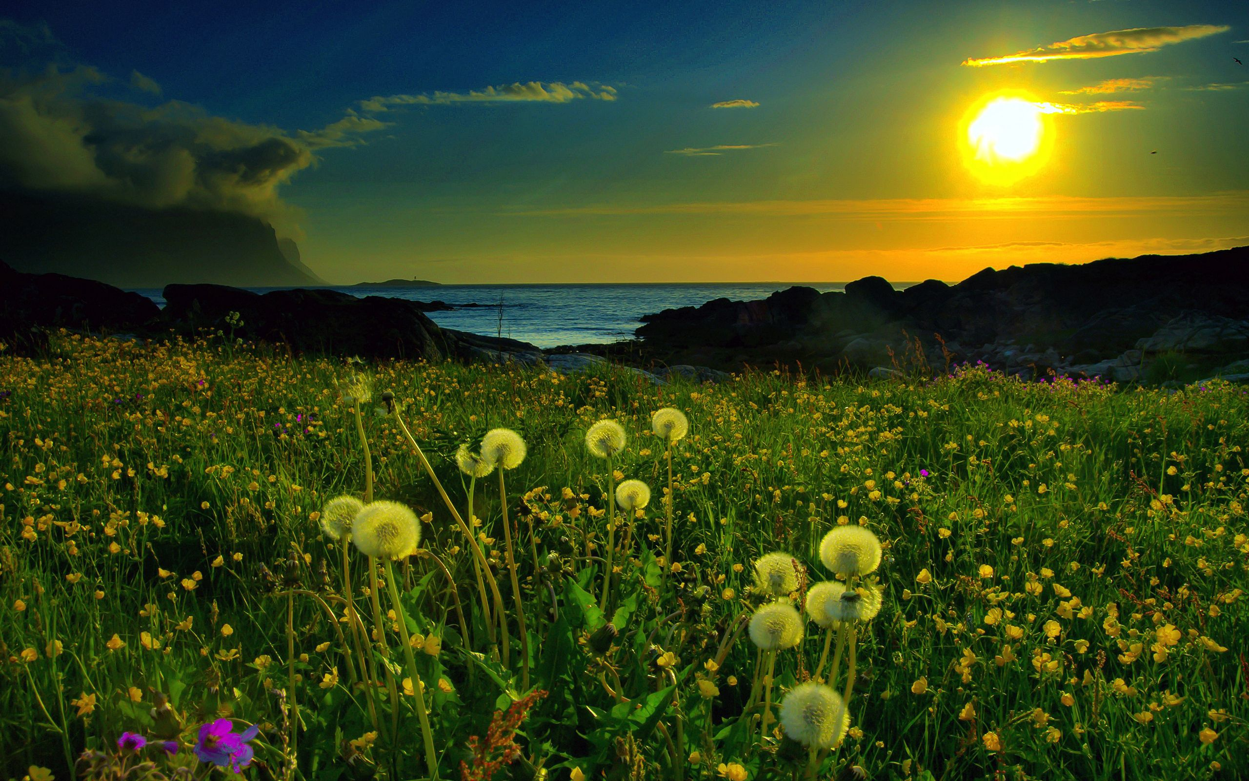 68389 download wallpaper Nature, Grass, Sky, Mountains, Sea, Dandelions, Clouds, Shine, Light, Evening, Glow screensavers and pictures for free