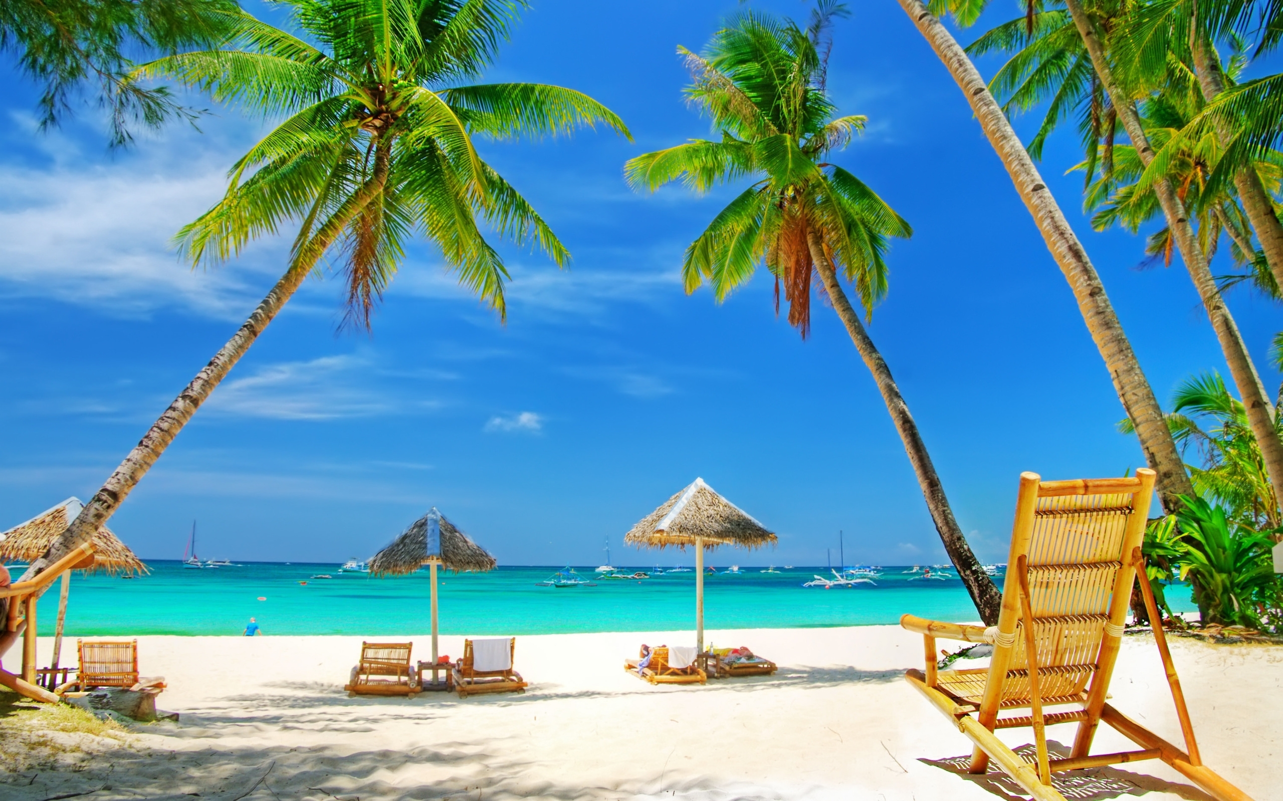 24971壁紙のダウンロード風景, 海, ビーチ, パームス-スクリーンセーバーと写真を無料で