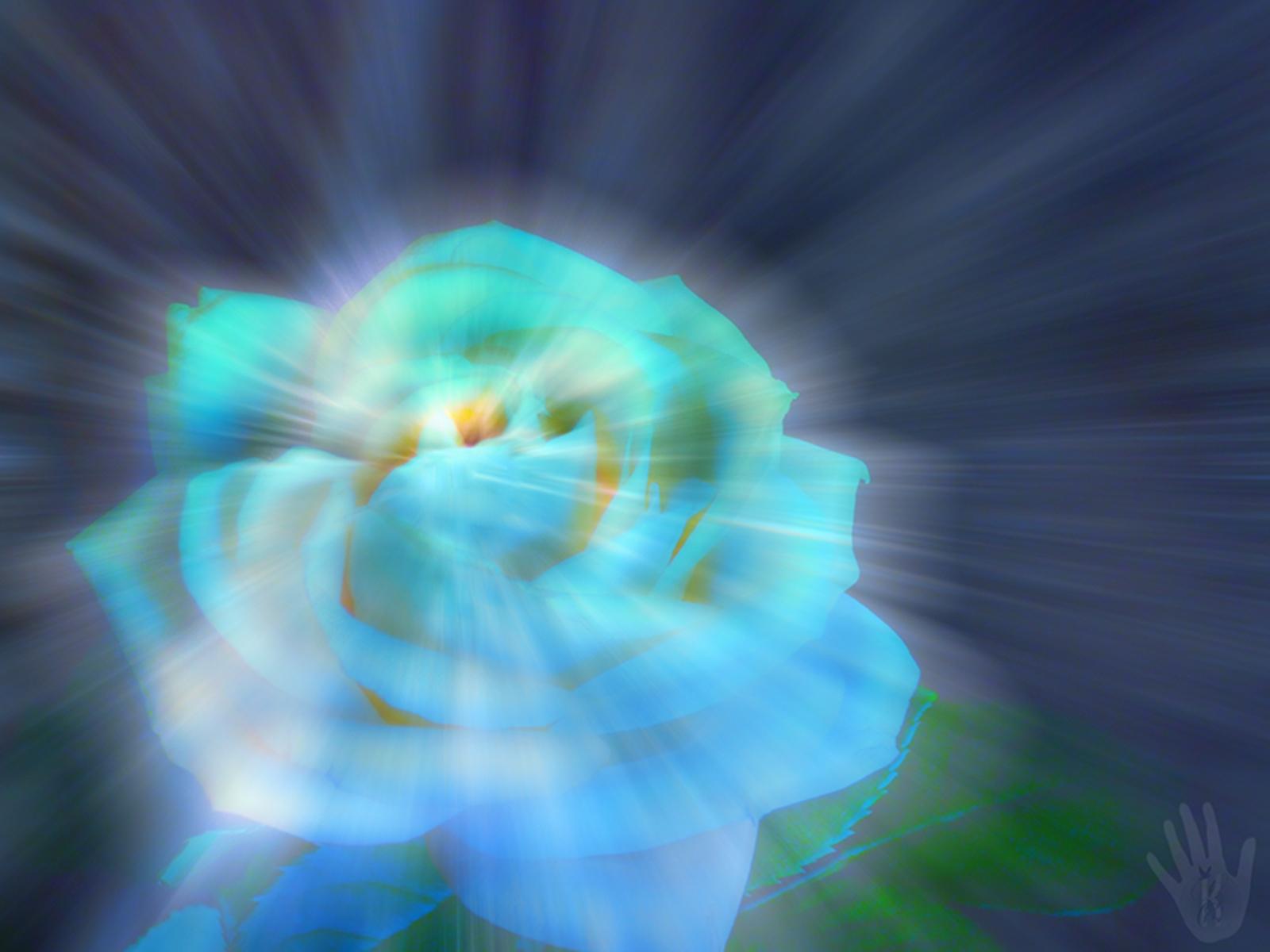 7906 скачать обои Праздники, Цветы, Розы, Открытки, 8 Марта - заставки и картинки бесплатно
