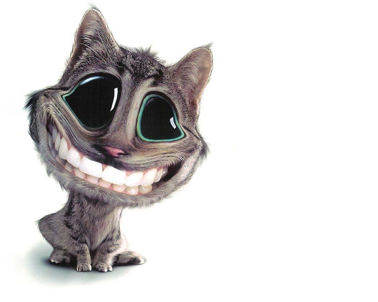 5213 Bildschirmschoner und Hintergrundbilder Humor auf Ihrem Telefon. Laden Sie Humor, Tiere, Katzen Bilder kostenlos herunter