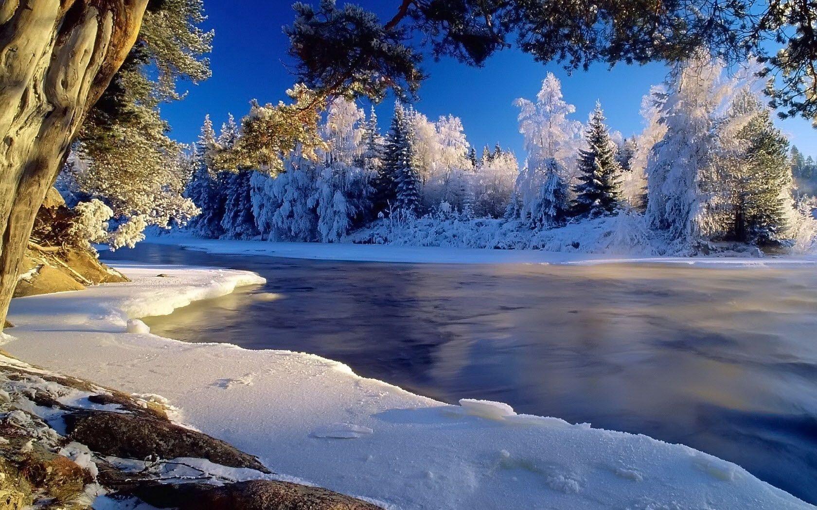122633 Заставки и Обои Лед на телефон. Скачать Лед, Природа, Деревья, Река, Течение, Иней, Берега картинки бесплатно