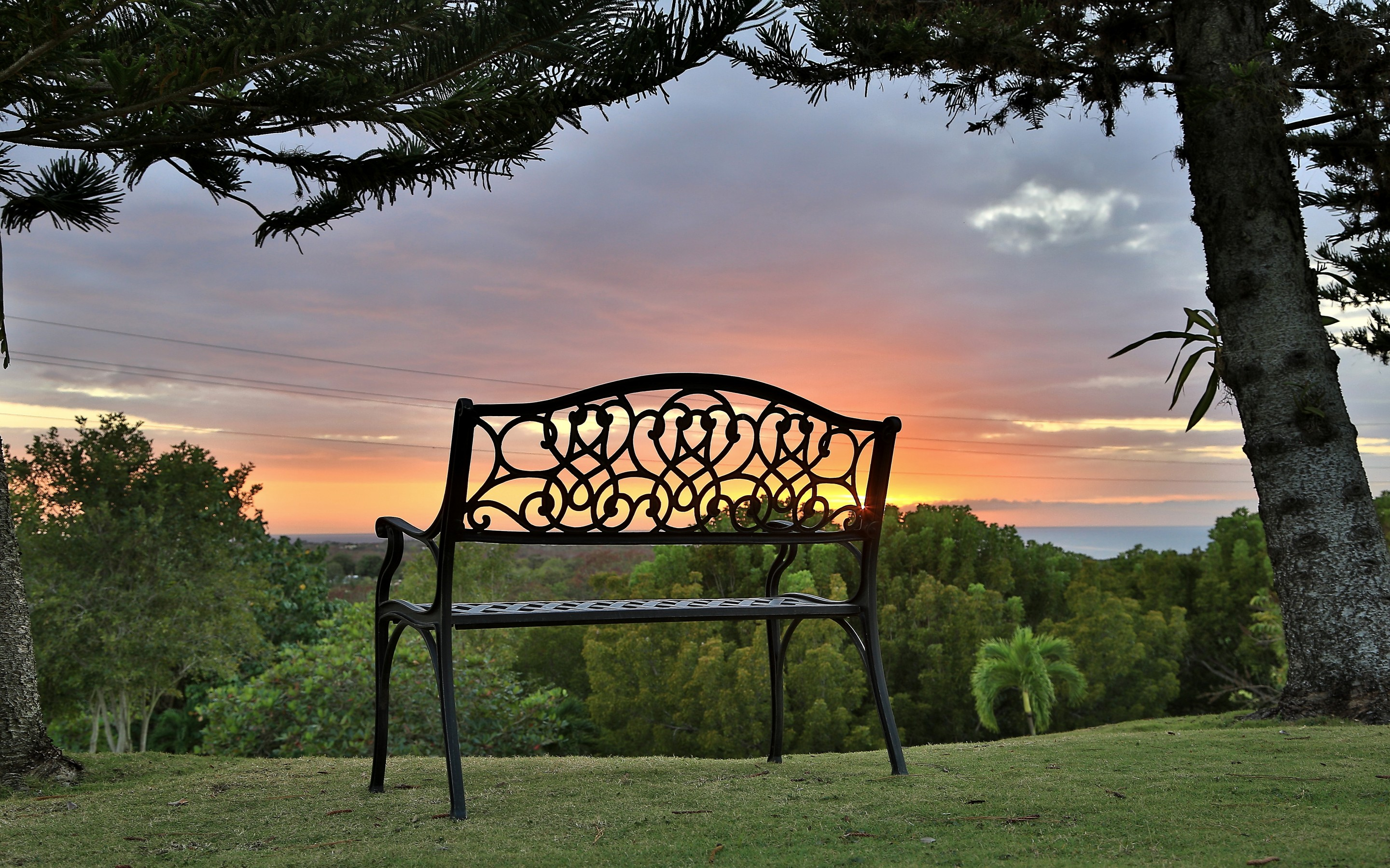 154821 Screensavers and Wallpapers Bench for phone. Download Nature, Grass, Bench, Elevation, Puerto Rico pictures for free