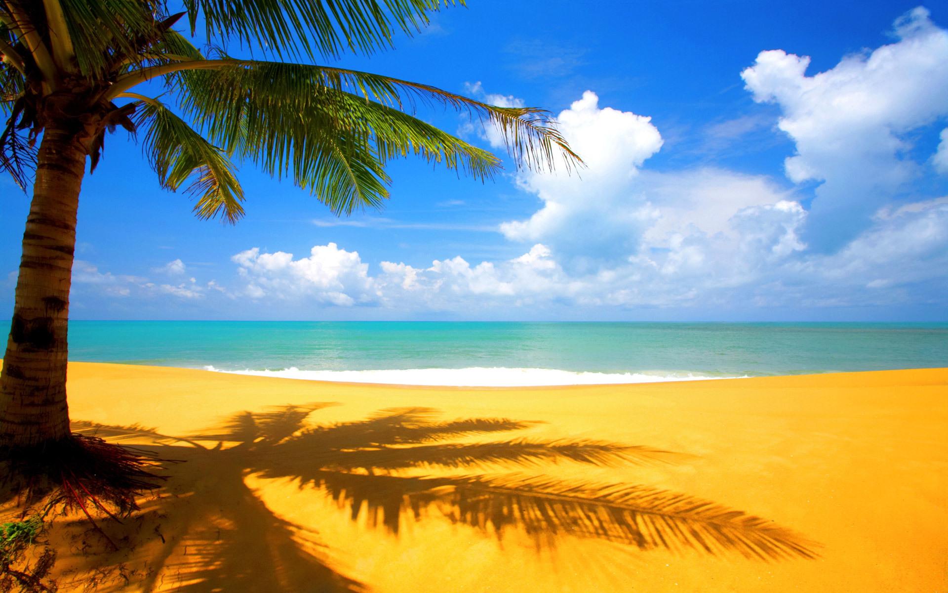 50123壁紙のダウンロード風景, 海, ビーチ-スクリーンセーバーと写真を無料で