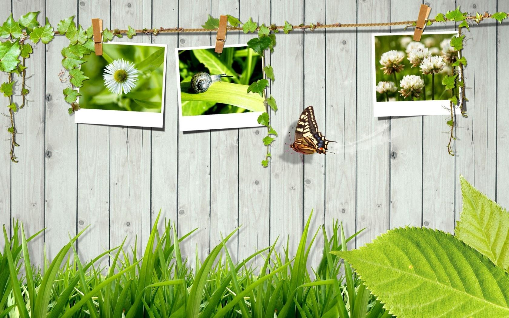 4940 скачать обои Абстракция, Пейзаж, Бабочки, Трава, Арт - заставки и картинки бесплатно