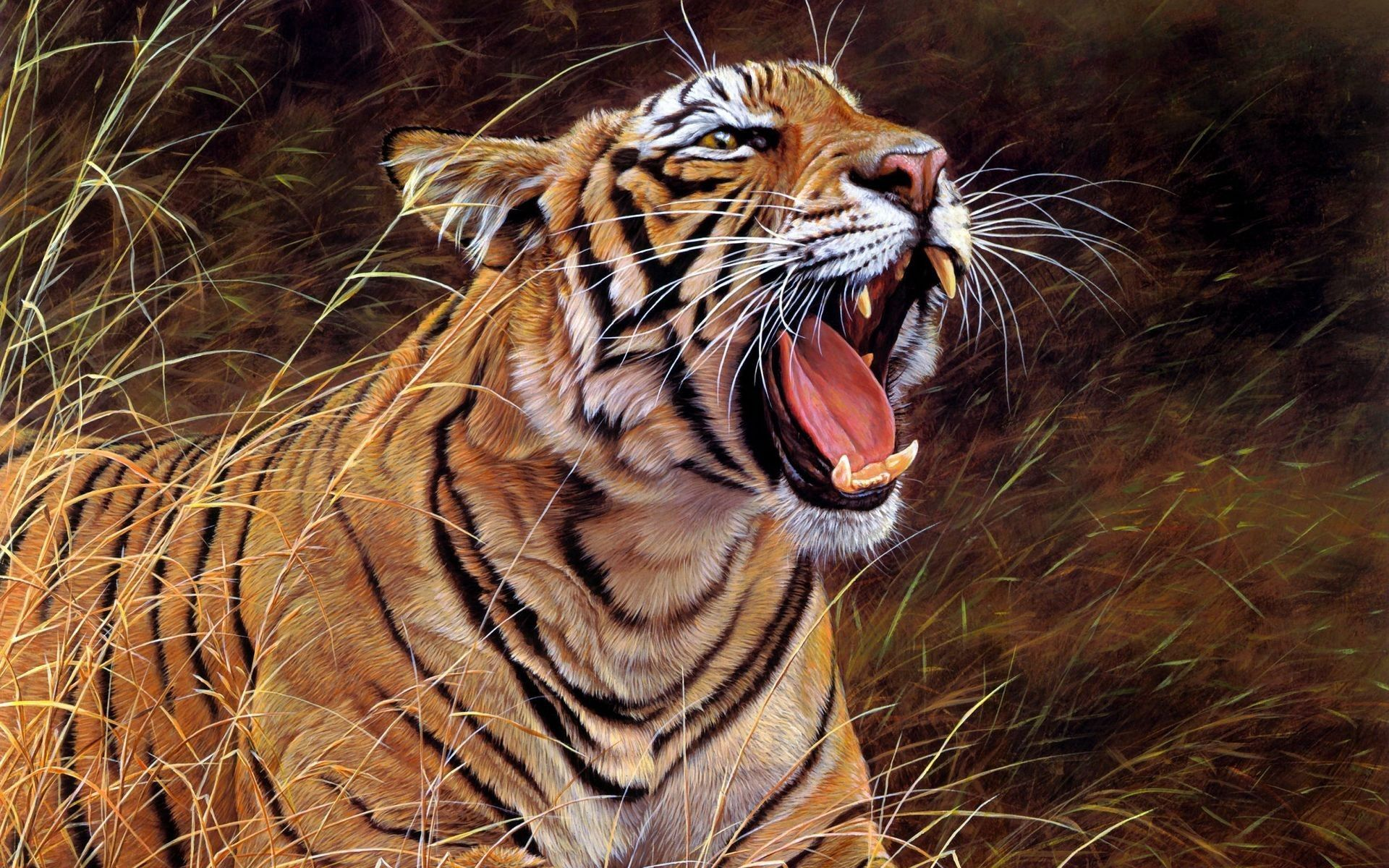 152267 download wallpaper Animals, Tiger, Grin, Big Cat, Aggression screensavers and pictures for free