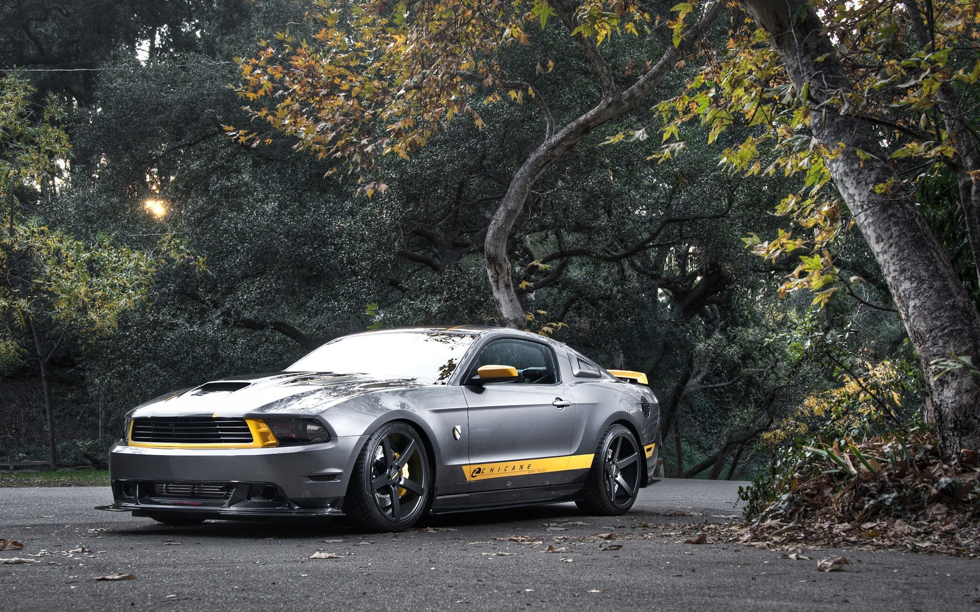47980 скачать обои Транспорт, Машины, Мустанг (Mustang) - заставки и картинки бесплатно