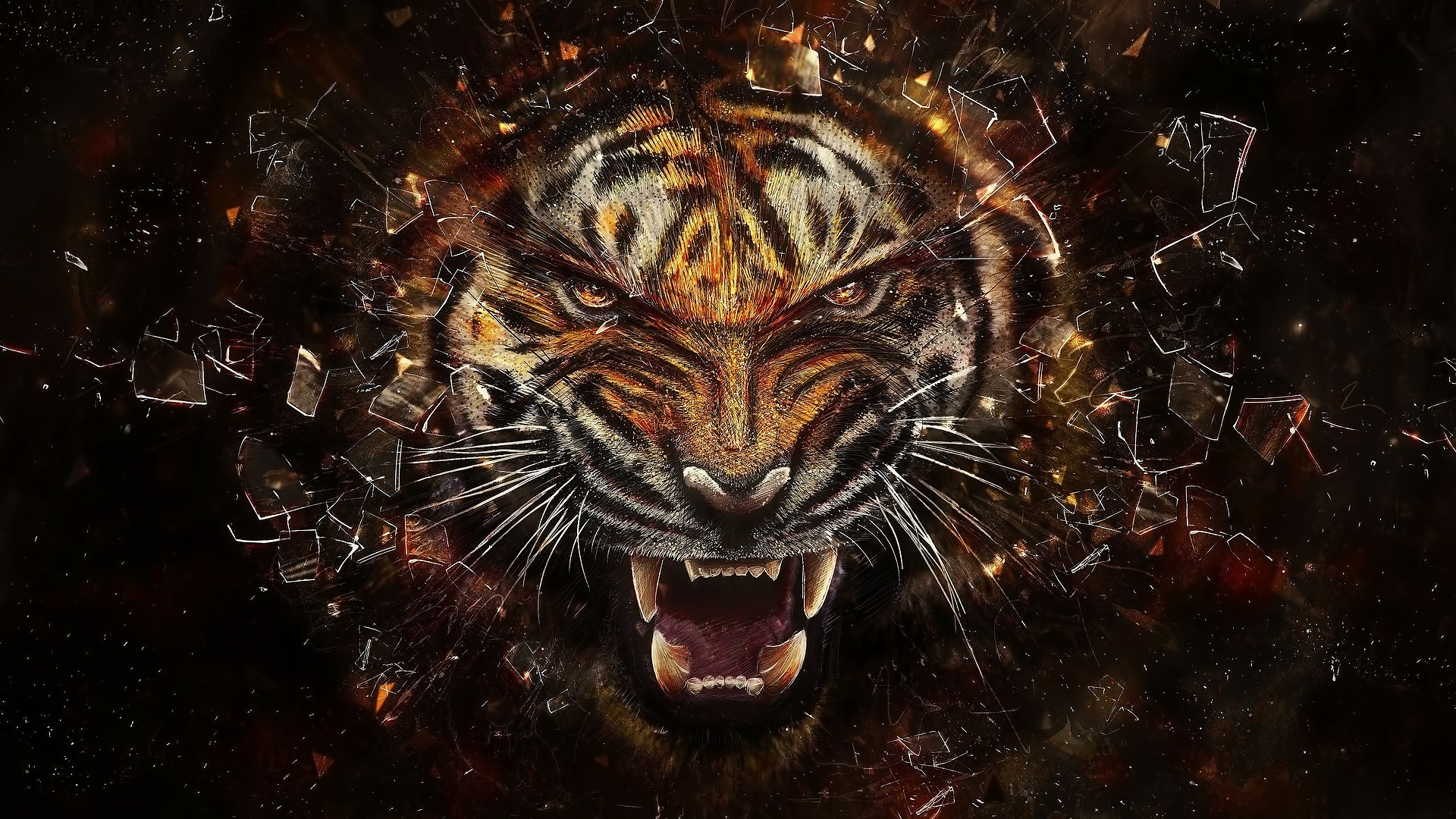 34118 download wallpaper Animals, Tigers, Pictures screensavers and pictures for free