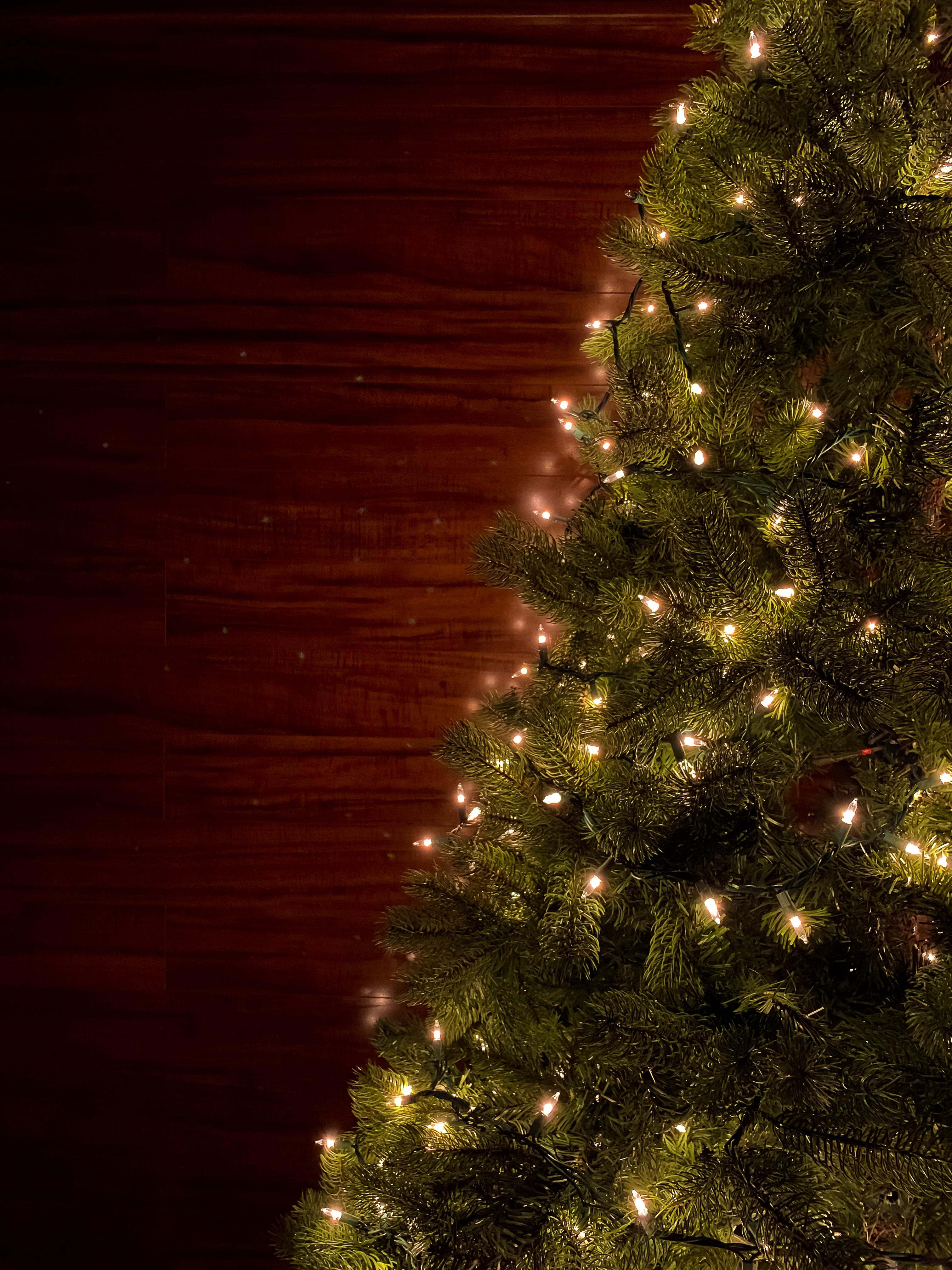 56355 скачать картинку Праздники, Рождество, Новый Год, Елка, Гирлянды - обои и заставки бесплатно
