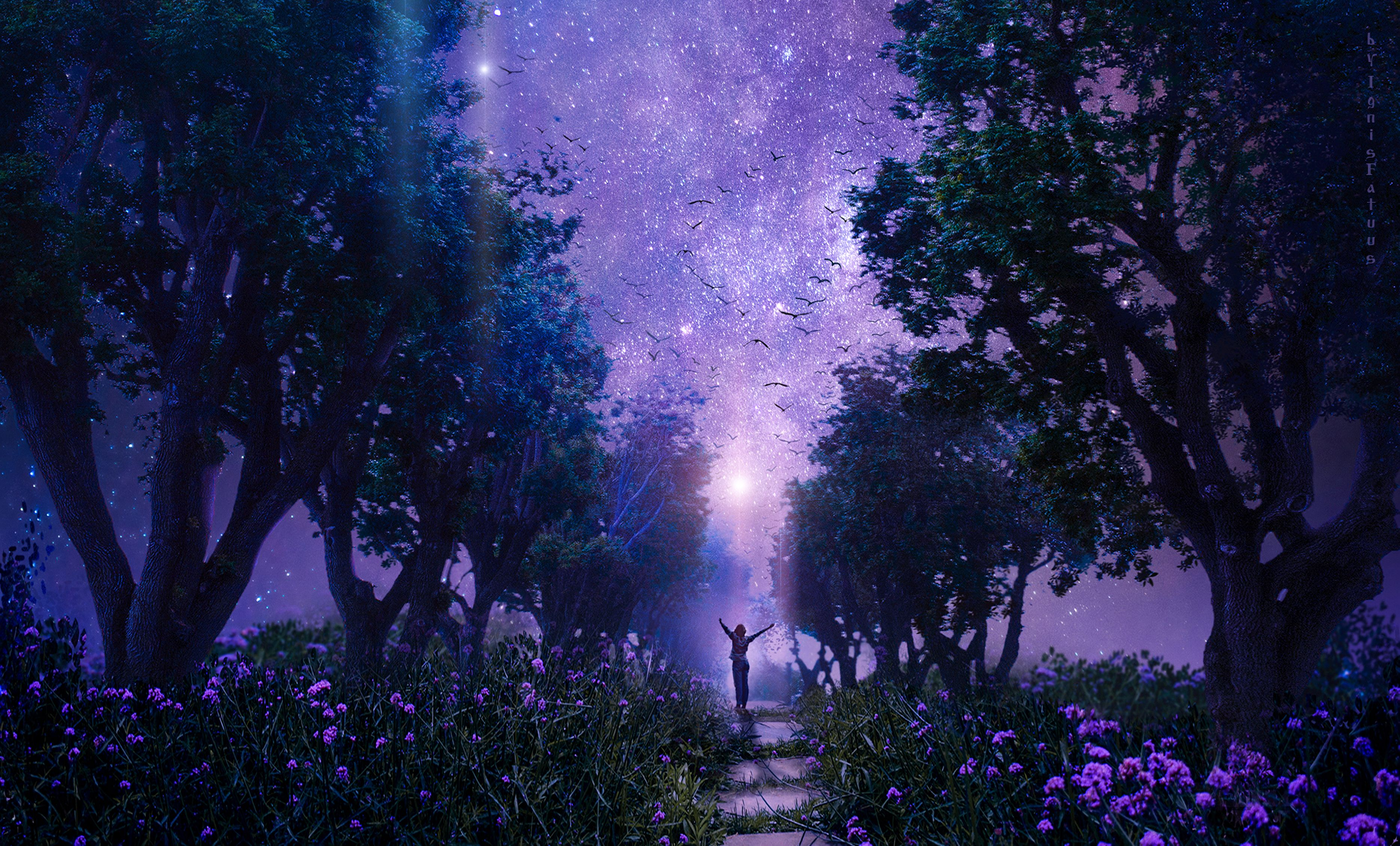 88992 Screensavers and Wallpapers Purple for phone. Download Fantasy, Violet, Art, Forest, Starry Sky, Purple, Fairy, Fabulous pictures for free
