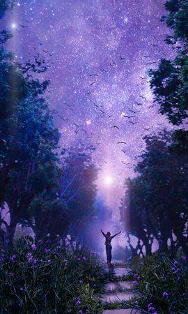 88992 baixar papel de parede Fantasia, Floresta, Céu Estrelado, Arte, Roxo, Violeta, Fada, Fabuloso - protetores de tela e imagens gratuitamente