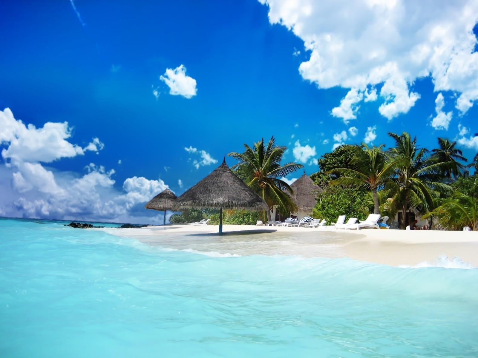 909壁紙のダウンロード風景, スカイ, 海, ビーチ, パームス-スクリーンセーバーと写真を無料で