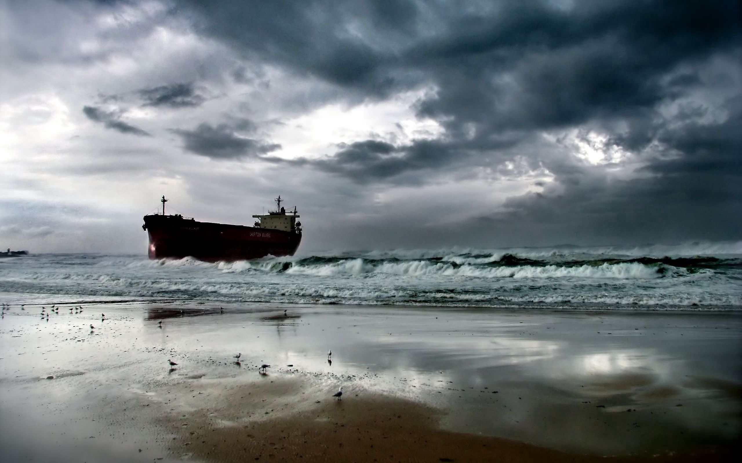 67784 download wallpaper Nature, Sea, Shore, Bank, Sand, Seagulls screensavers and pictures for free