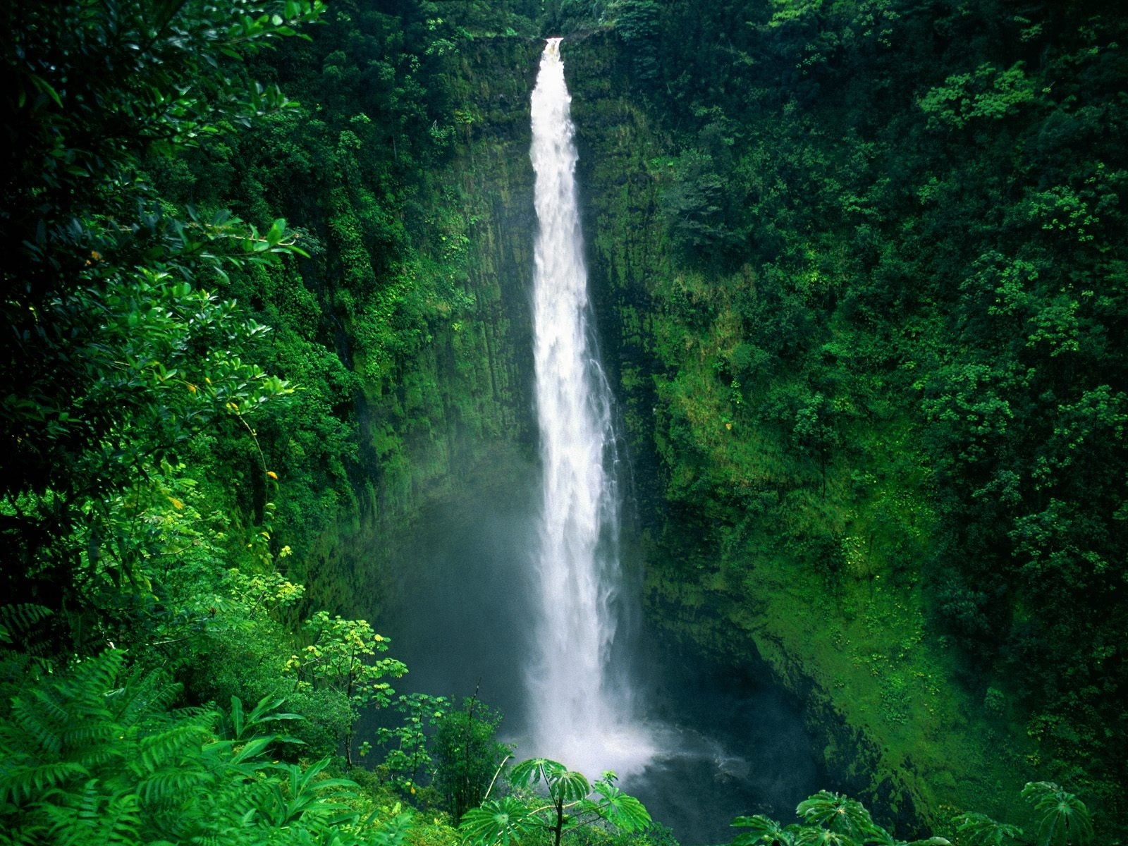 4175 download wallpaper Landscape, Water, Trees, Waterfalls screensavers and pictures for free