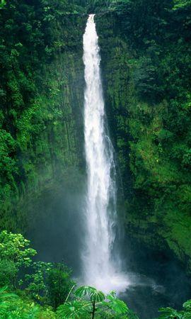 4175 скачать обои Пейзаж, Вода, Деревья, Водопады - заставки и картинки бесплатно
