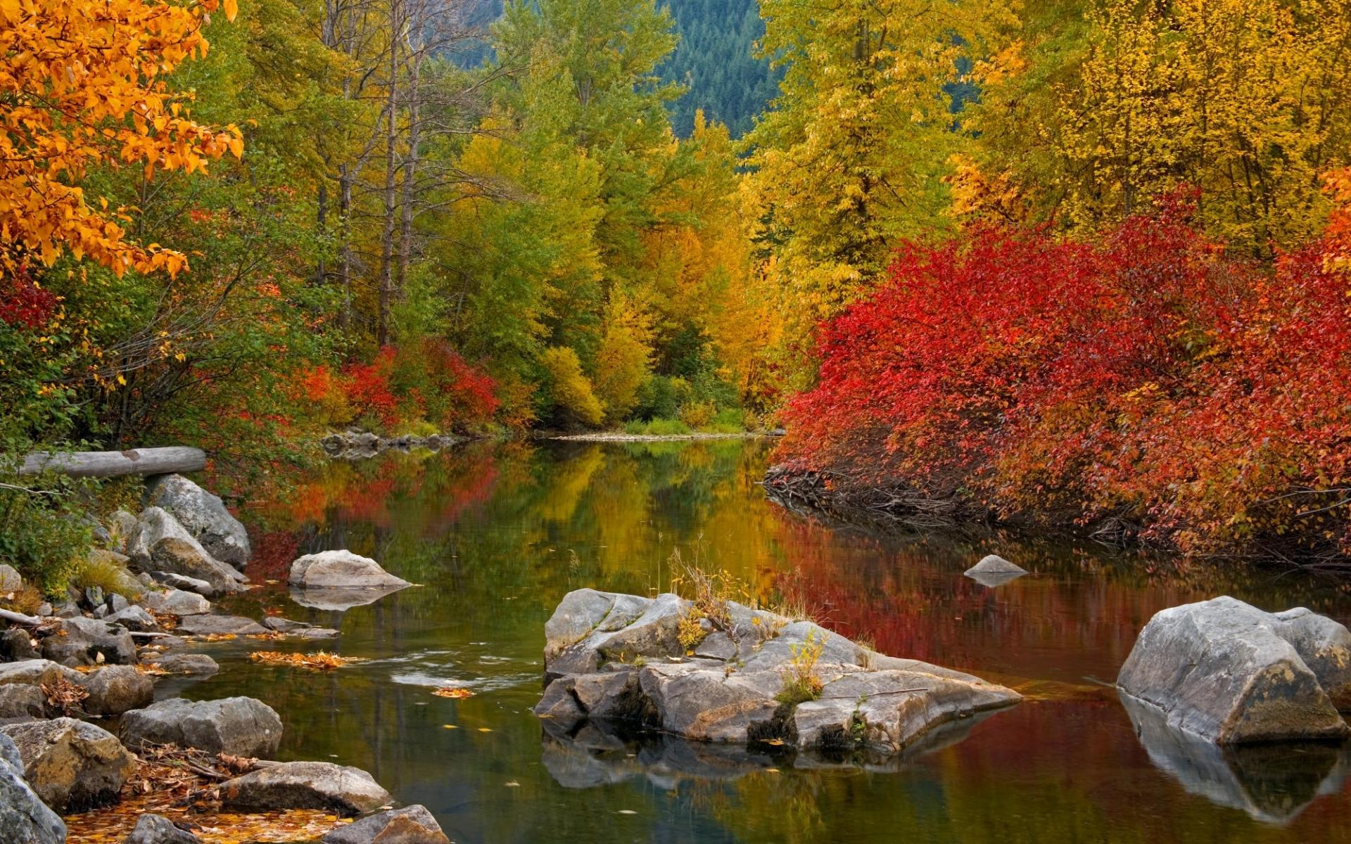 Скачать картинку Пейзаж, Река, Камни, Осень в телефон бесплатно.