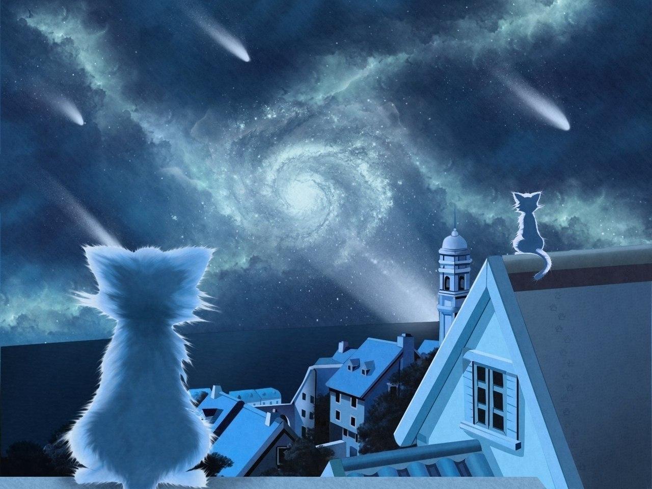 16845 скачать обои Пейзаж, Кошки (Коты, Котики), Небо, Рисунки - заставки и картинки бесплатно