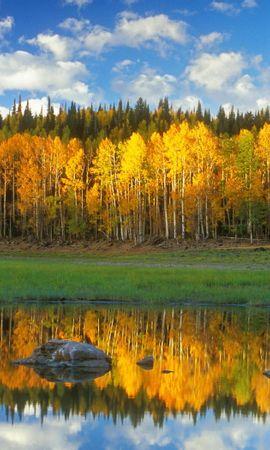 25469 скачать обои Пейзаж, Река, Деревья, Небо, Облака - заставки и картинки бесплатно