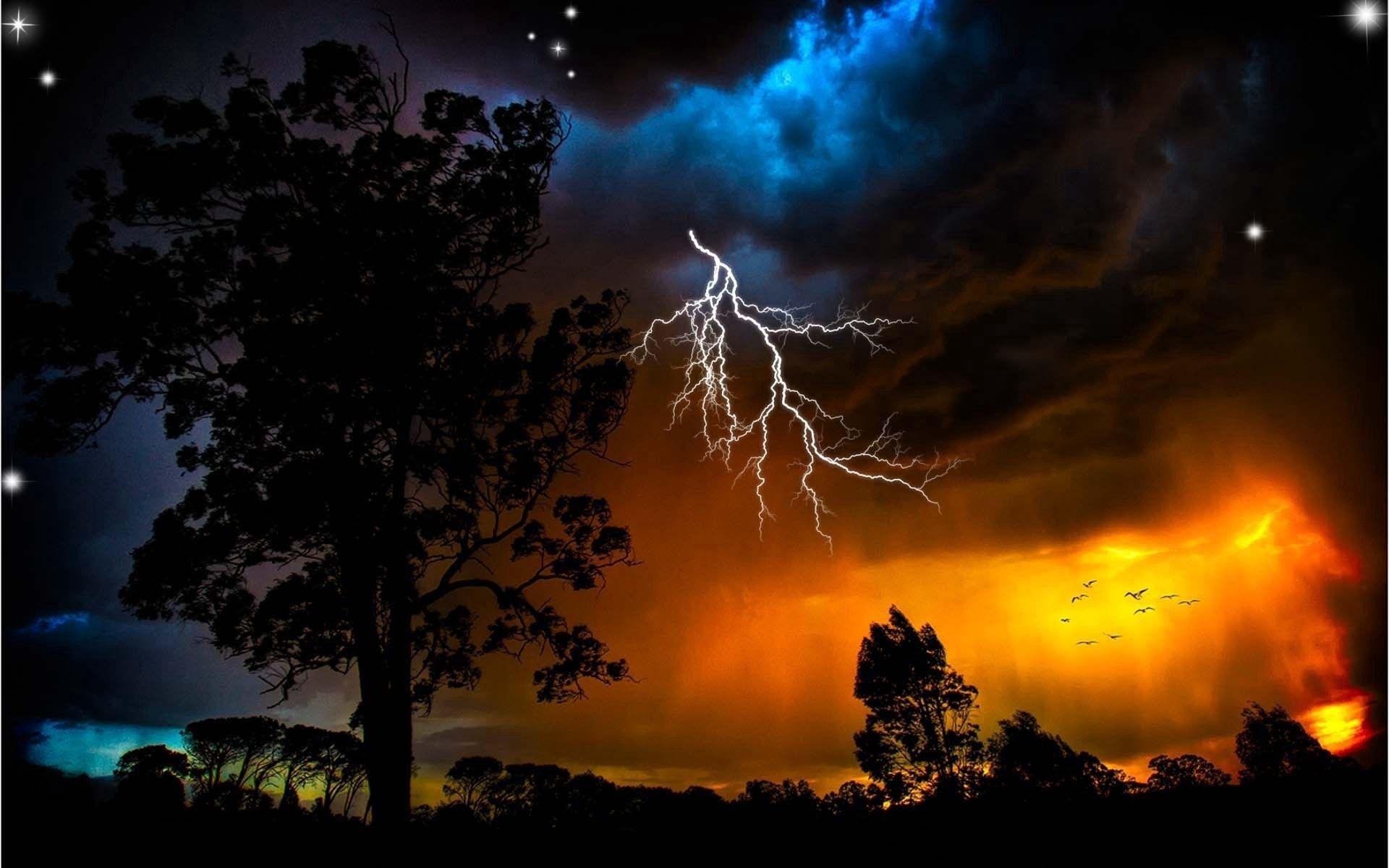 90408 скачать обои Ночь, Молния, Деревья, Птицы, Природа, Небо, Звезды, Очертания, Оранжевый, Непогода - заставки и картинки бесплатно