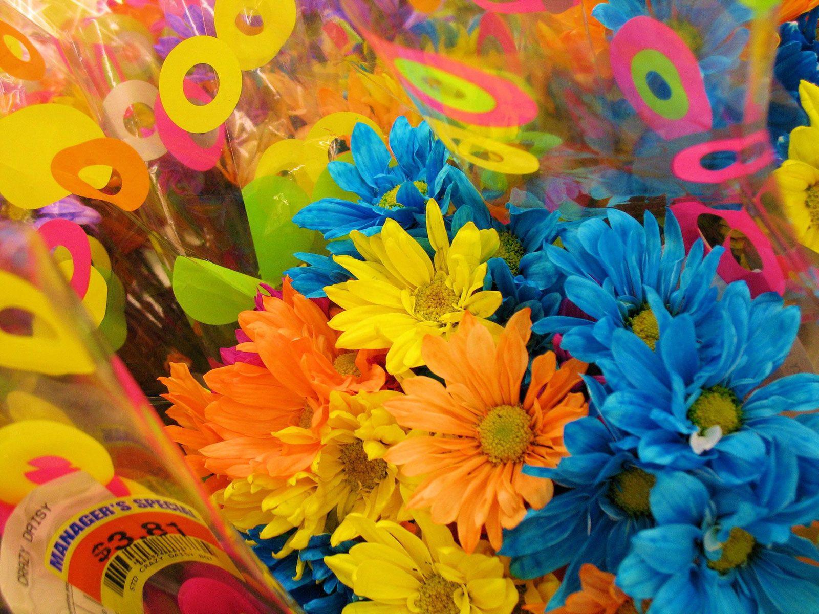 130847 télécharger le fond d'écran Fleurs, Emballage, Coloré, Graphiquement, Brillamment, Chrysanthème, Bouquets - économiseurs d'écran et images gratuitement
