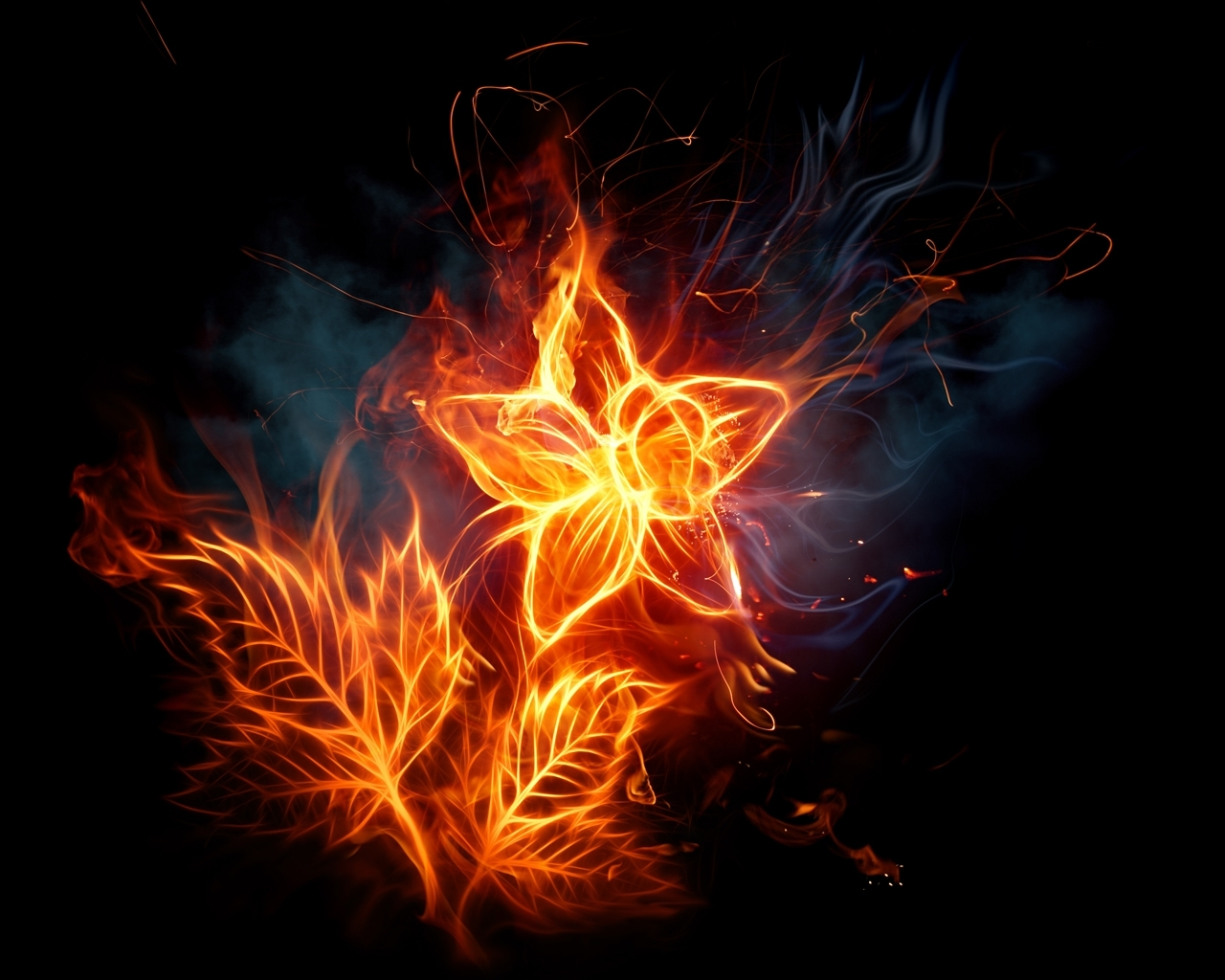 1850 download wallpaper Flowers, Fire, Pictures screensavers and pictures for free