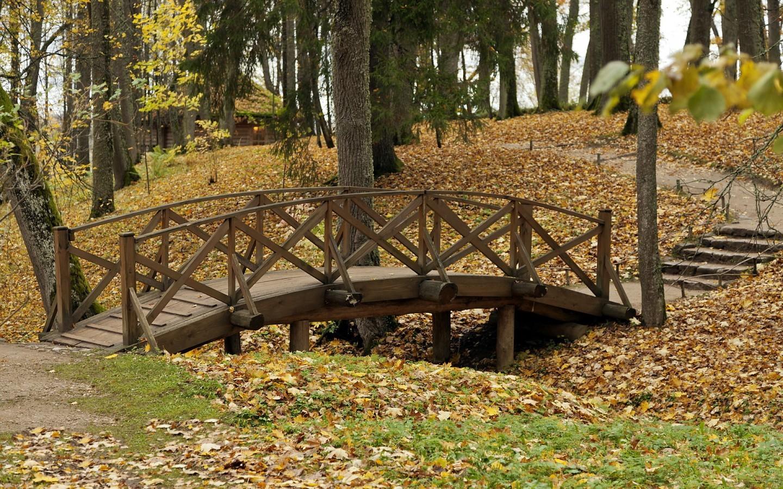 23031 скачать обои Пейзаж, Мосты, Деревья, Осень, Листья - заставки и картинки бесплатно