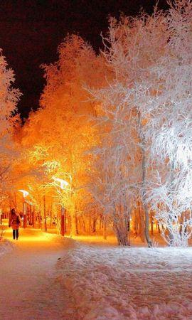22040 скачать обои Пейзаж, Зима, Деревья, Ночь, Снег - заставки и картинки бесплатно