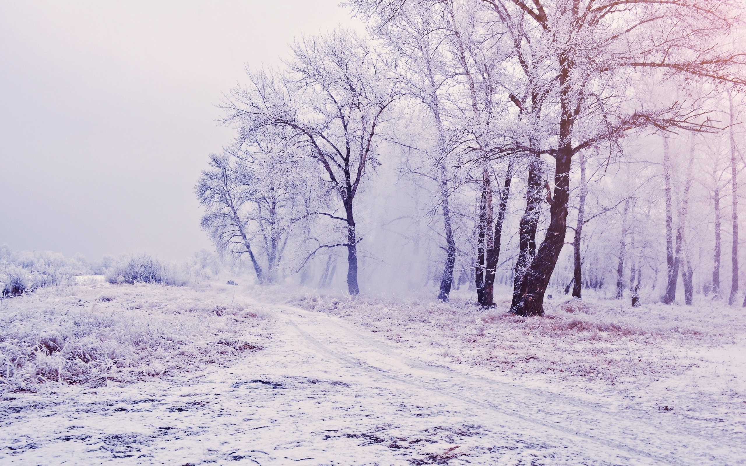 43007 download wallpaper Landscape, Winter, Nature screensavers and pictures for free