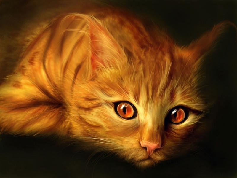 37955 завантажити шпалери Малюнки, Тварини, Кішки - заставки і картинки безкоштовно