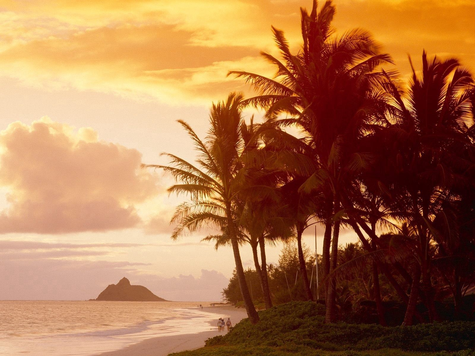 64785 download wallpaper Nature, Shore, Bank, Sunlight, Sunset, Evening, People, Palms screensavers and pictures for free
