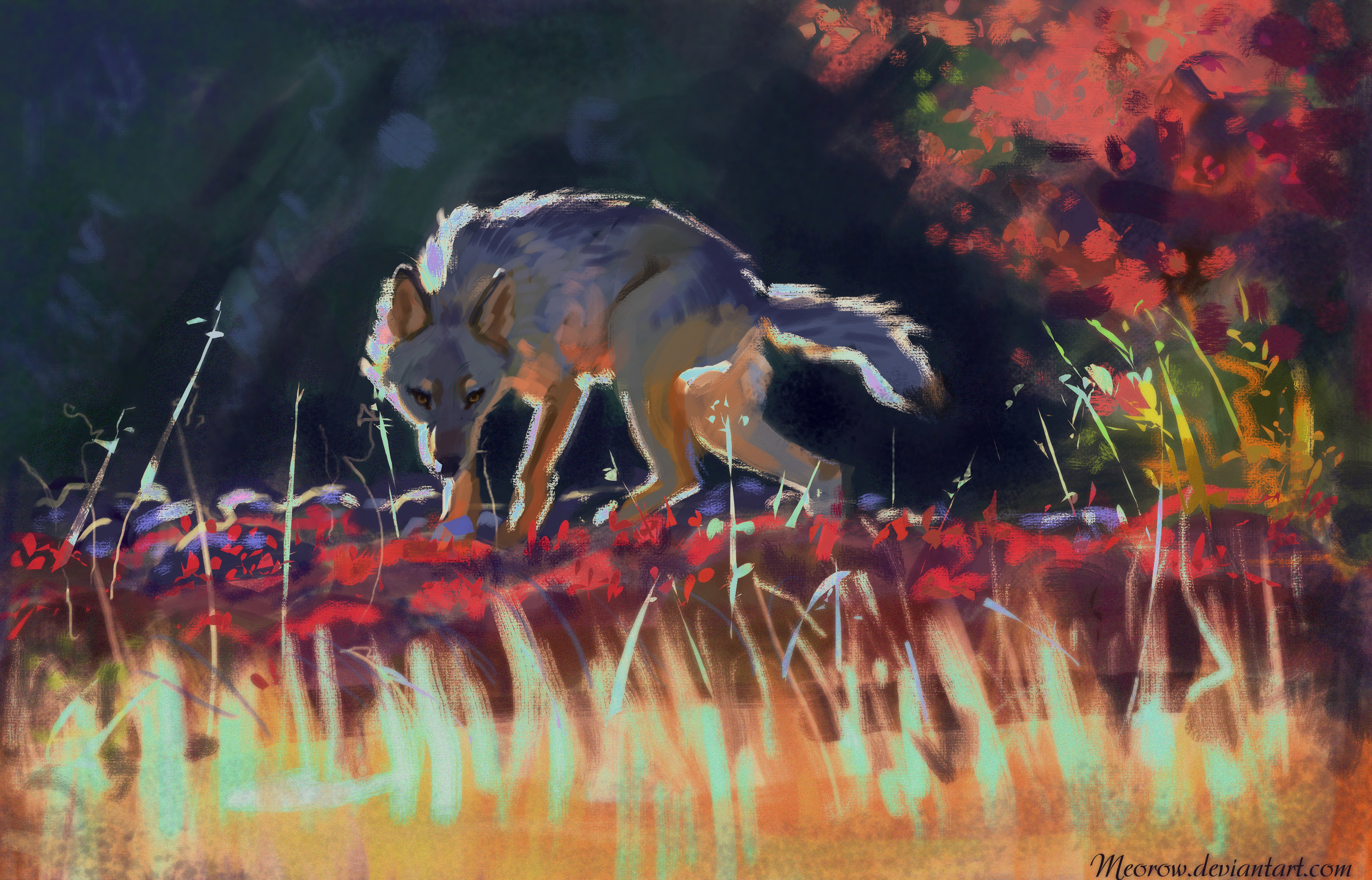 55935 download wallpaper Art, Grass, Predator, Wolf, Wildlife screensavers and pictures for free