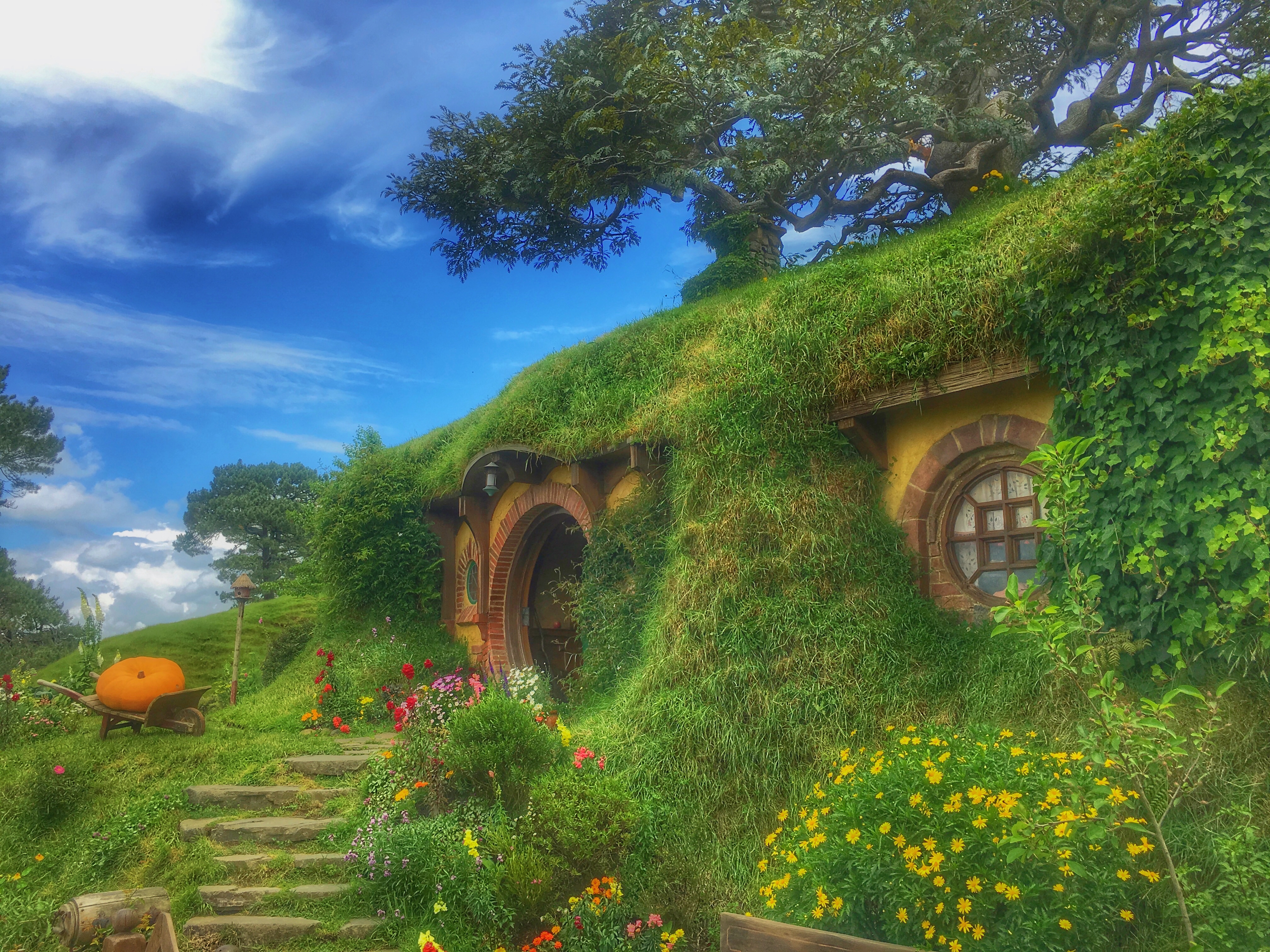 119817 Screensavers and Wallpapers New Zealand for phone. Download Nature, New Zealand, Fairy, Fabulous, Hobbiton, Forest House pictures for free