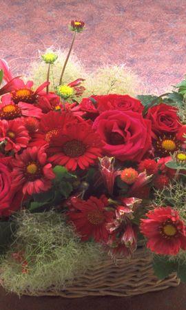 1402 скачать обои Праздники, Растения, Цветы, Розы, Хризантемы, Букеты - заставки и картинки бесплатно