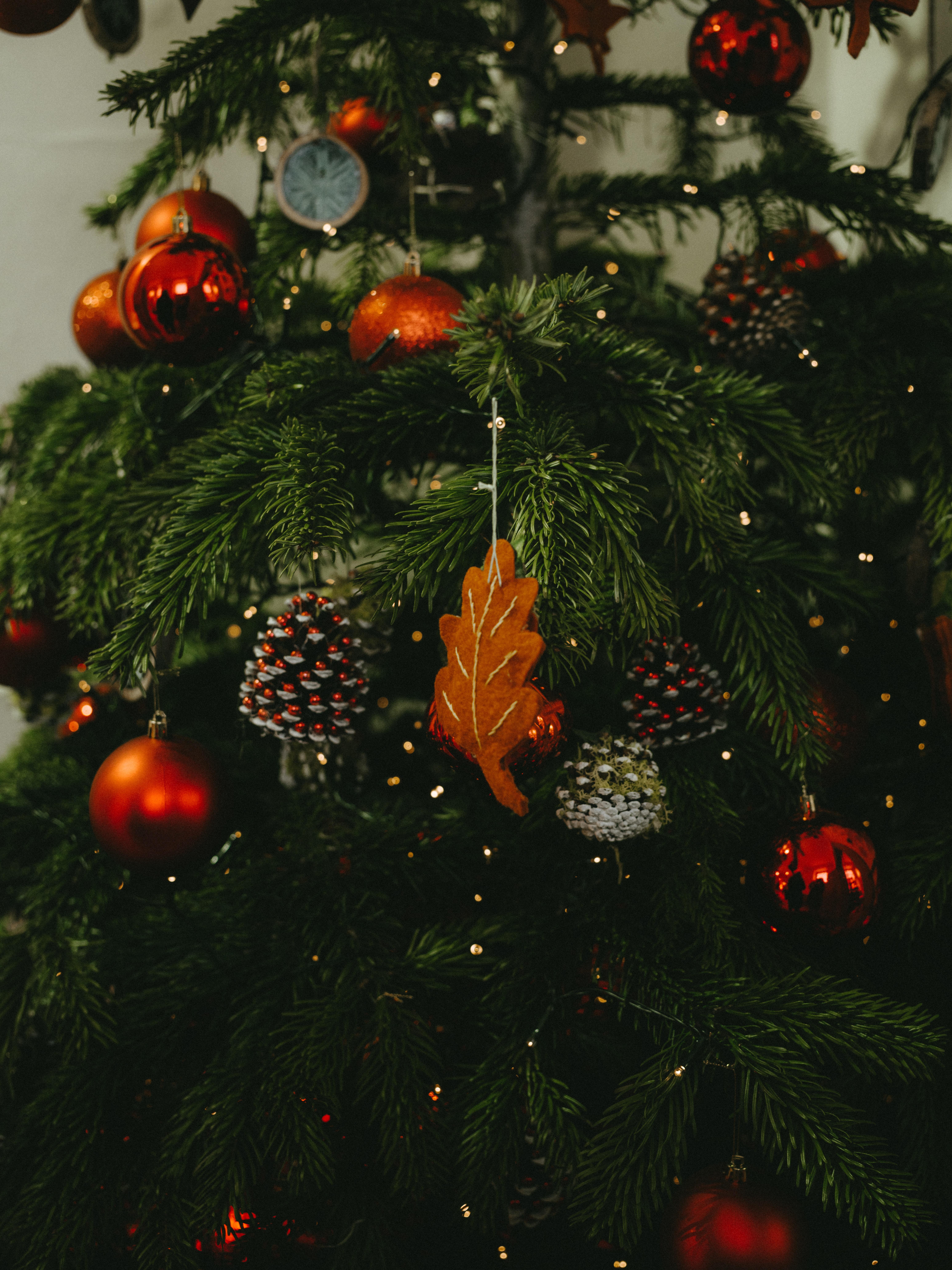 128973 скачать обои Праздники, Украшения, Рождество, Новый Год, Праздник, Елка - заставки и картинки бесплатно