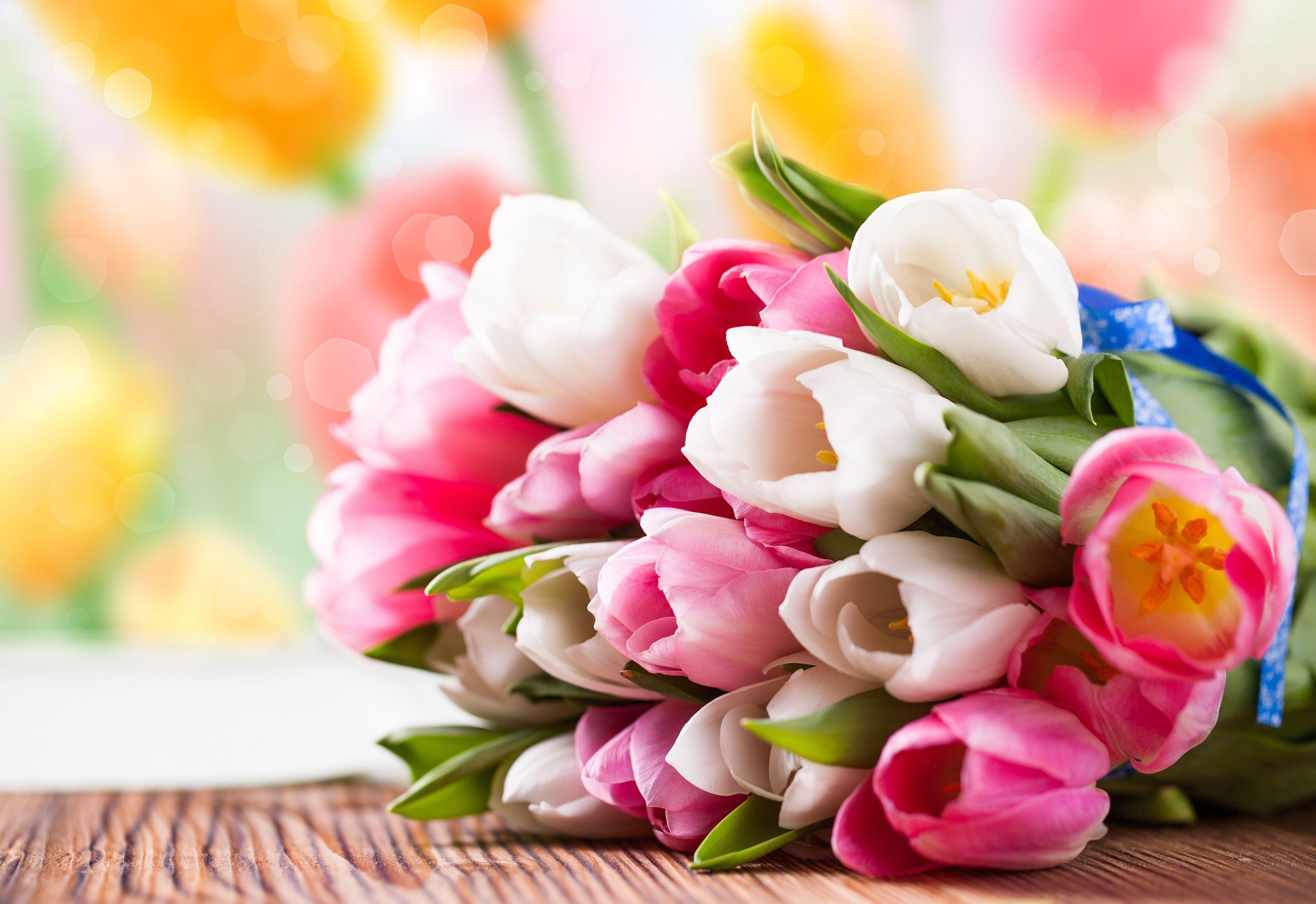 20314 скачать обои Растения, Цветы, Тюльпаны, Букеты - заставки и картинки бесплатно