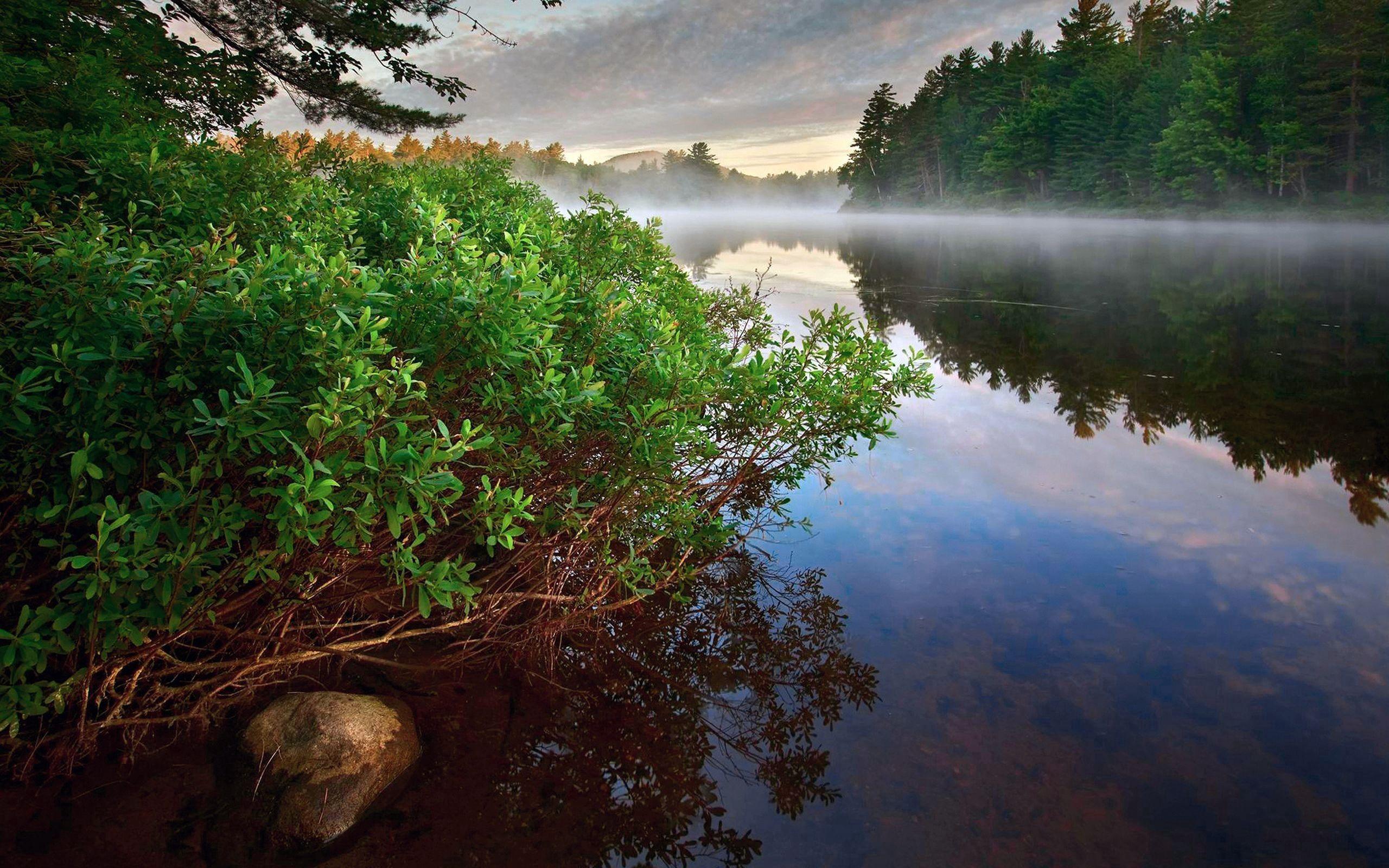 158061 fond d'écran 720x1280 sur votre téléphone gratuitement, téléchargez des images Nature, Rivières, Arbres, Réflexion 720x1280 sur votre mobile
