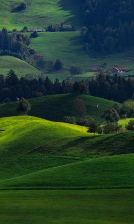 115559 Заставки и Обои Поля на телефон. Скачать Природа, Долина, Зеленый, Поля, Хирцель, Швейцария картинки бесплатно