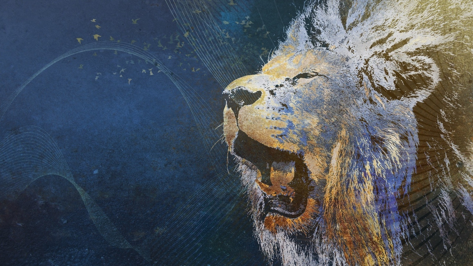 16704 download wallpaper Animals, Background, Lions, Pictures screensavers and pictures for free