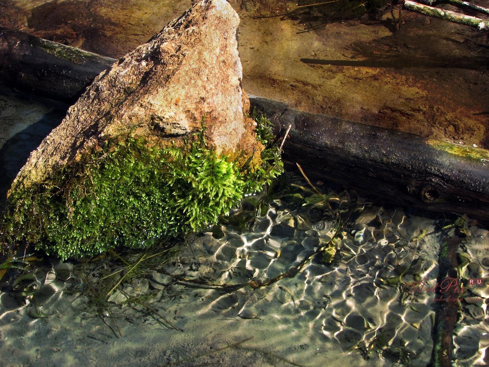 2042 скачать обои Пейзаж, Вода, Камни - заставки и картинки бесплатно