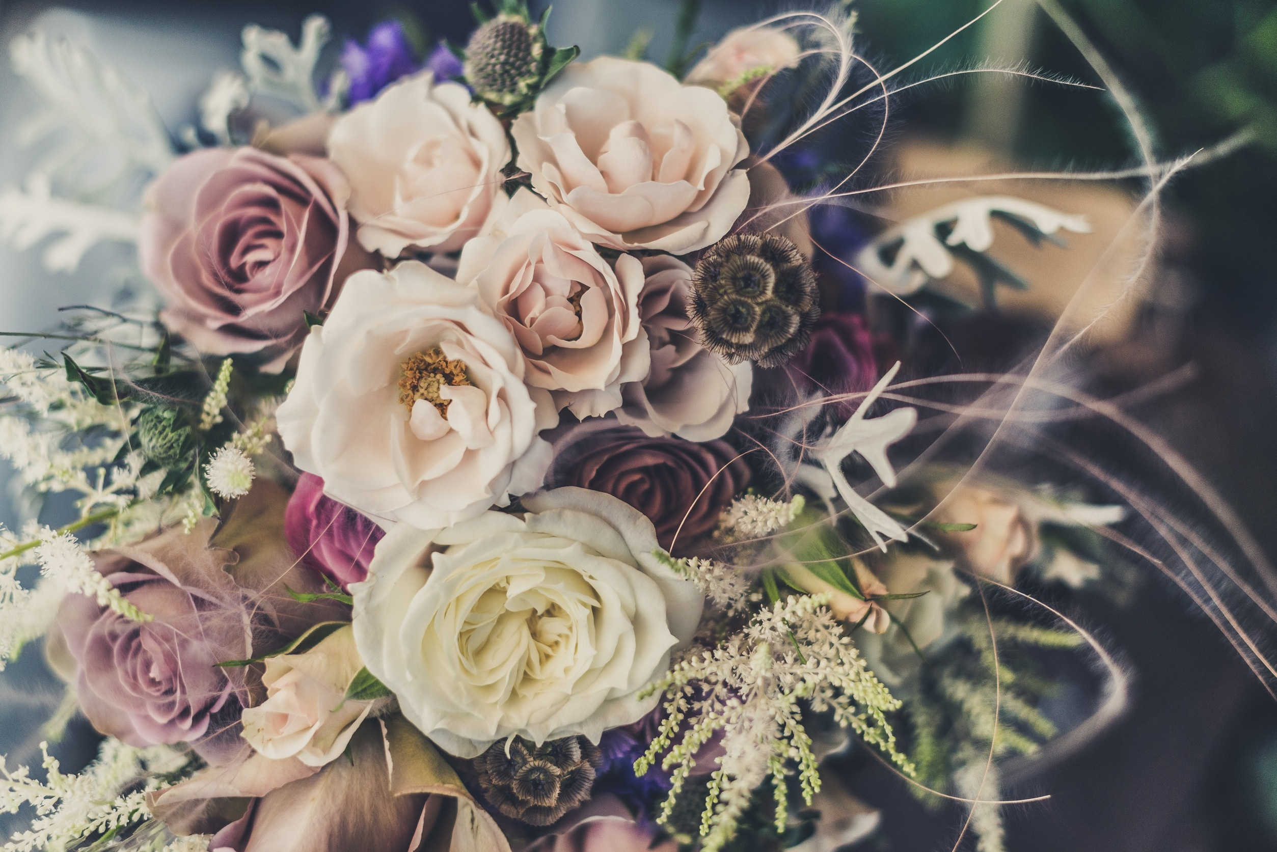 122105 Screensavers and Wallpapers Bouquet for phone. Download Flowers, Registration, Typography, Bouquet, Composition pictures for free