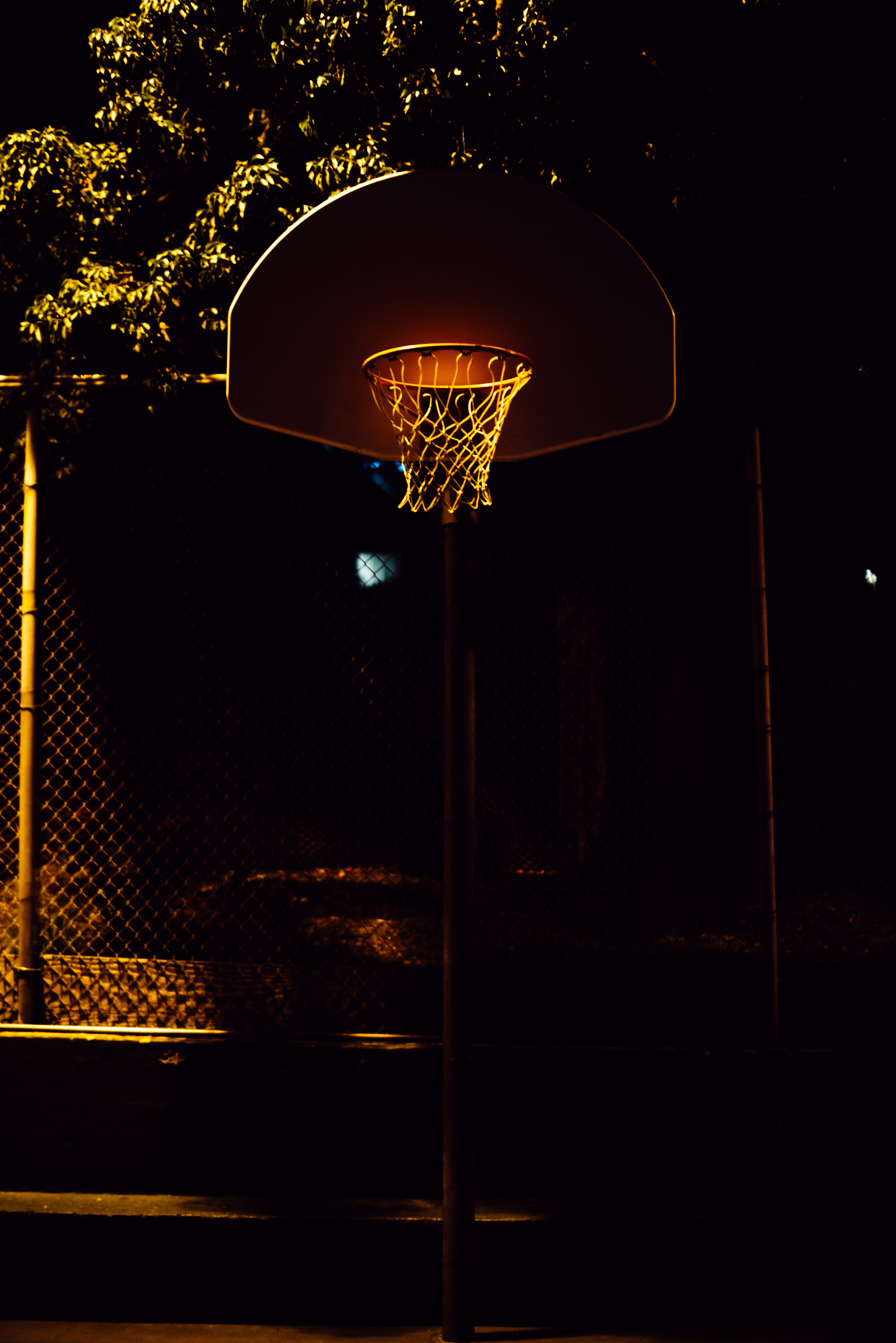 73297 Screensavers and Wallpapers Basketball for phone. Download Sports, Basketball, Basketball Hoop, Basketball Ring, Basketball Net, Basketball Grid, Shadows, Night pictures for free