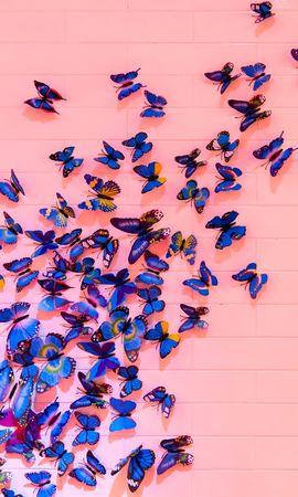 106899 descargar fondo de pantalla Miscelánea, Misceláneo, Mariposas, Pared, Decoración, Registro, Tipografía: protectores de pantalla e imágenes gratis