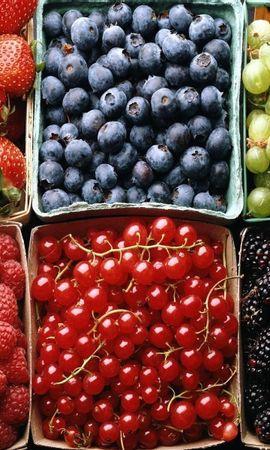 1346 télécharger le fond d'écran Fruits, Nourriture, Contexte, Baies - économiseurs d'écran et images gratuitement