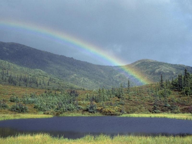 32803 免費下載壁紙 景观, 彩虹 屏保和圖片