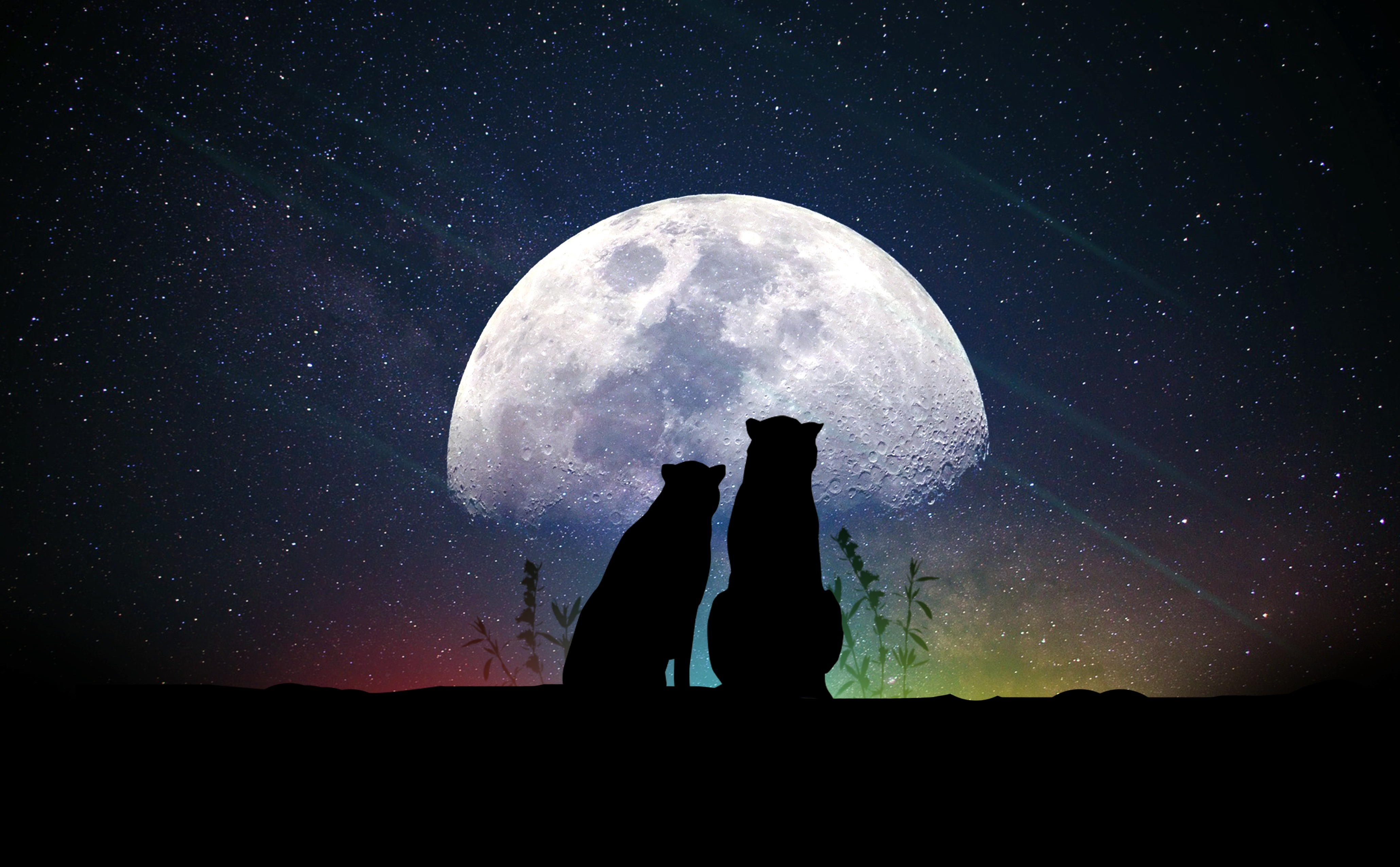 53898 Screensavers and Wallpapers Moon for phone. Download Art, Moon, Silhouettes, Starry Sky, Animals pictures for free