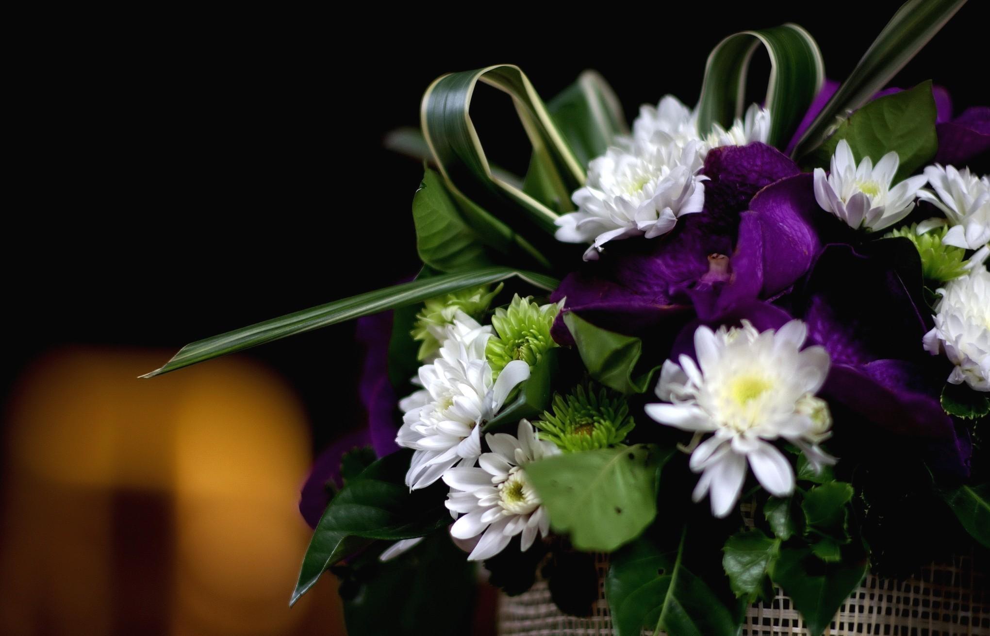 84305 скачать обои Цветы, Орхидеи, Букет, Зелень, Хризантемы - заставки и картинки бесплатно