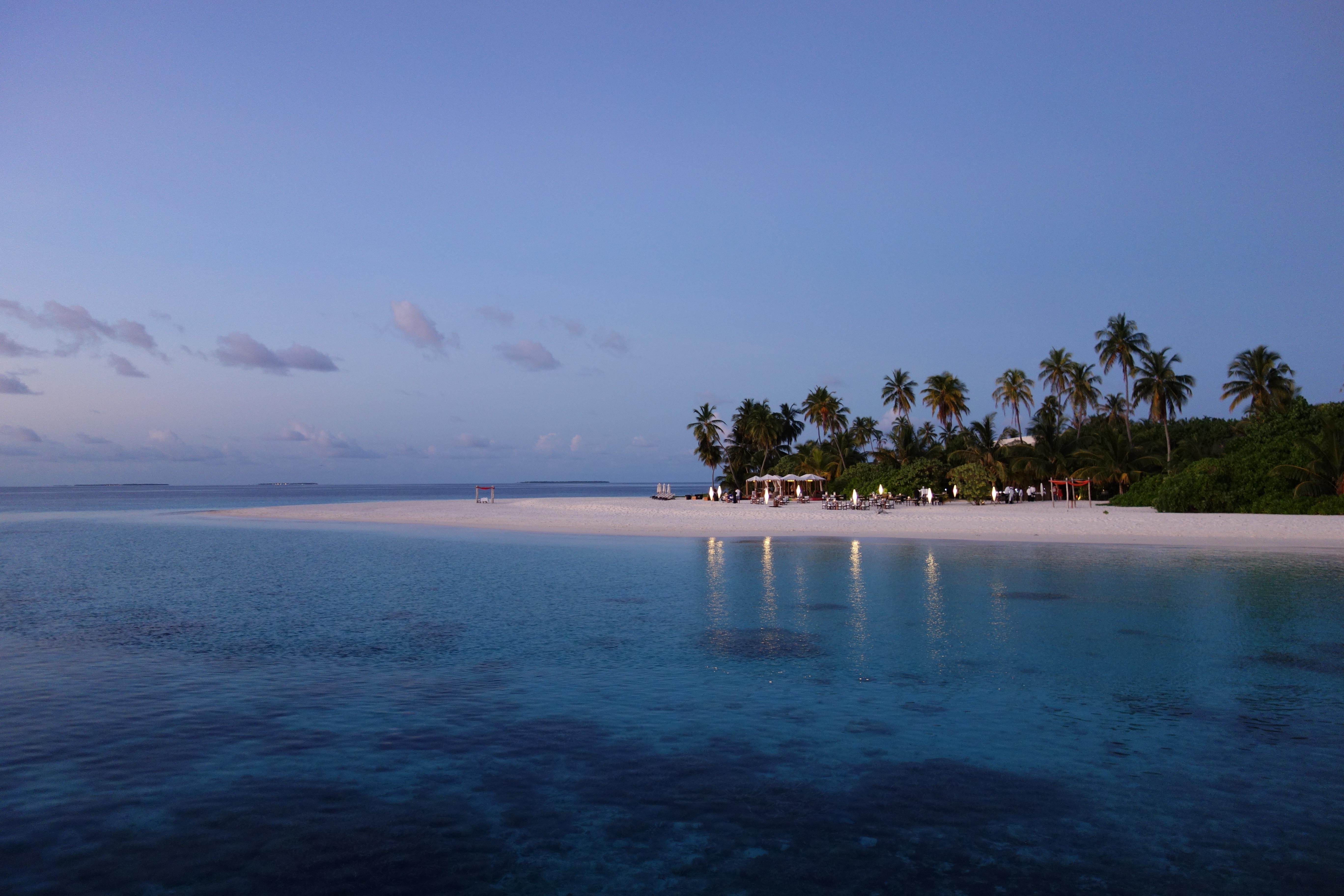 68846 免費下載壁紙 性质, 马尔代夫, 热带, 热带地区, 海滩, 晚上, 棕榈 屏保和圖片