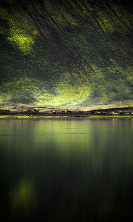 53923 baixar papel de parede Lago, Costa, Banco, Colina, Cavalos, Natureza - protetores de tela e imagens gratuitamente