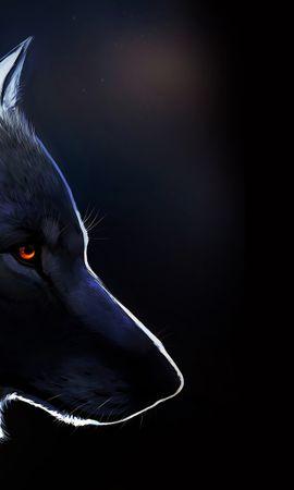 20193 baixar papel de parede Animais, Lobos, Imagens - protetores de tela e imagens gratuitamente
