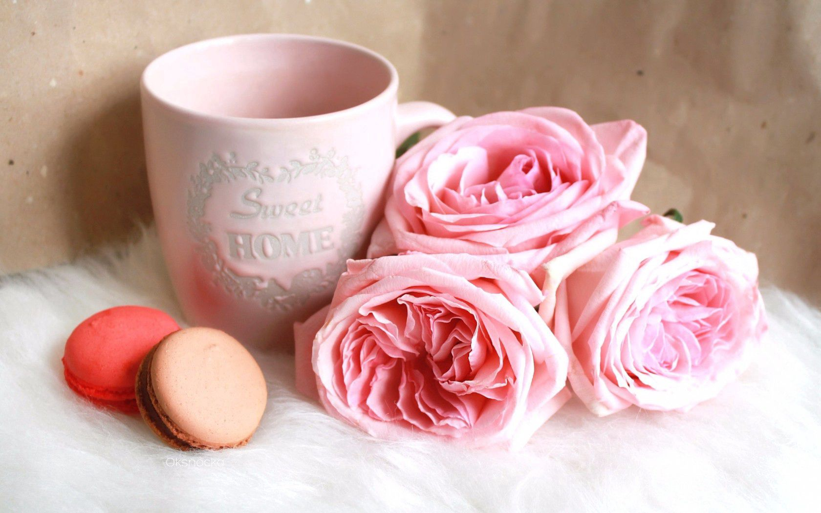 128979 download wallpaper Food, Macaron, Cookies, Cup, Roses screensavers and pictures for free