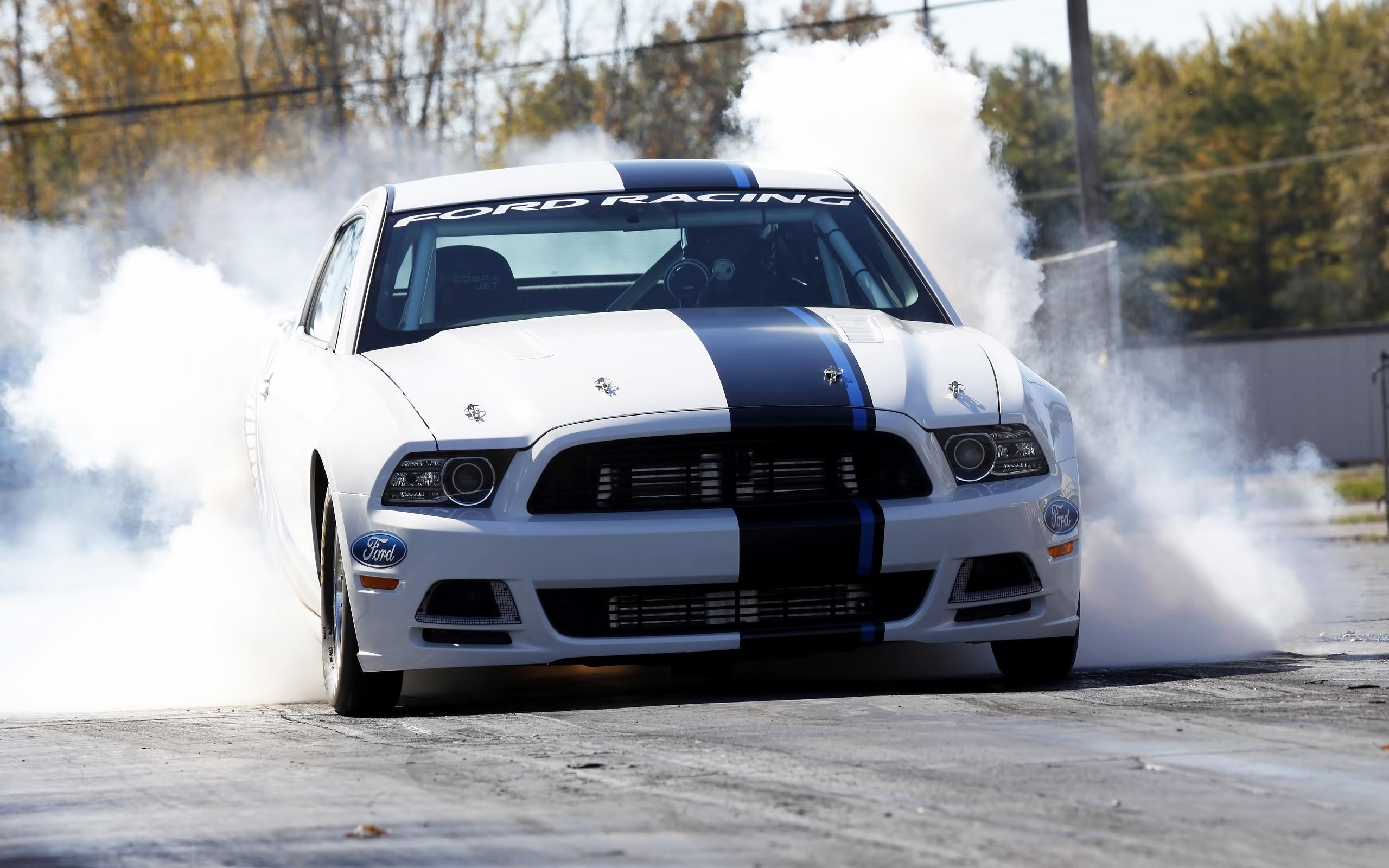49187 скачать обои Транспорт, Машины, Форд (Ford), Мустанг (Mustang) - заставки и картинки бесплатно